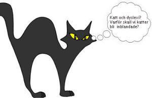kattmedbubbla2